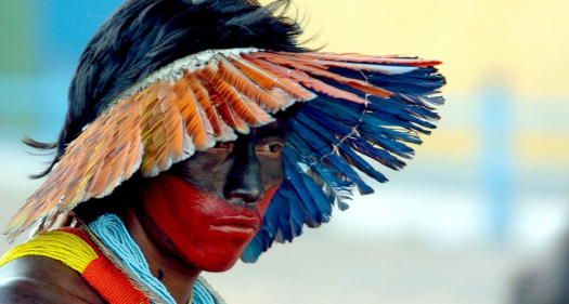 Brazilian aboriginal